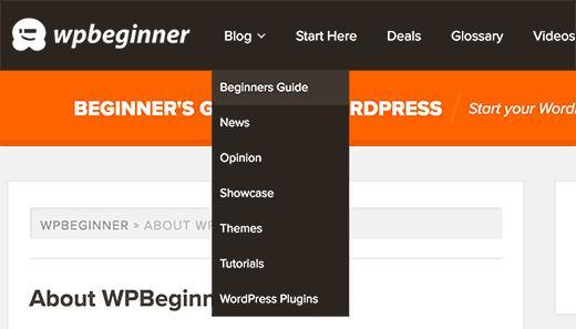 Displaying blog topics in WordPress navigation menu