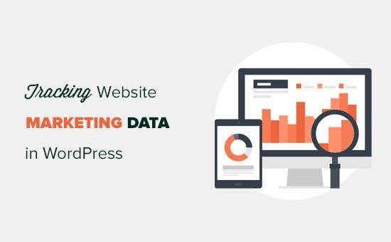 跟踪WordPress中的营销数据
