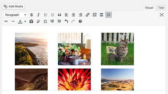 Image gallery in post editor