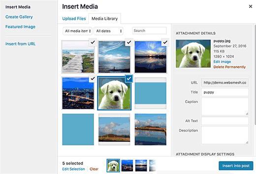 WordPress中常见的图像问题