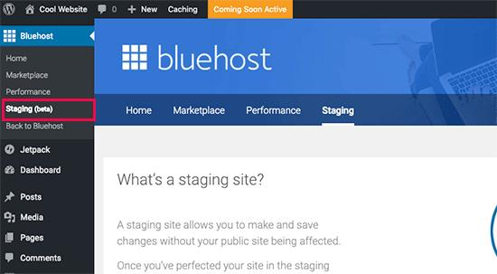 Creating a staging site in Bluehost