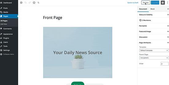 WordPress post preview preloader