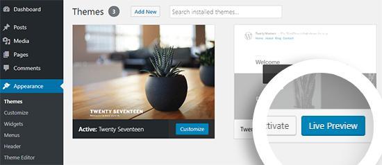 WordPress Theme Live Preview Option