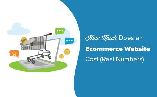 Cost of building an eCommerce website