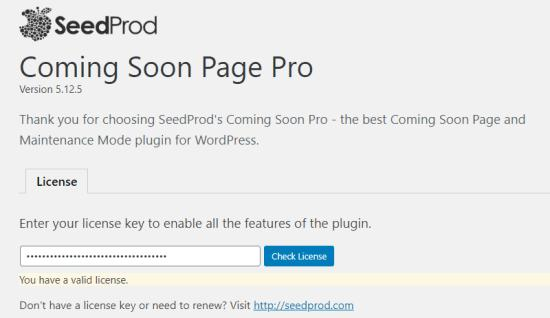 Entering your license key on the SeedProd Coming Soon Pro settings page